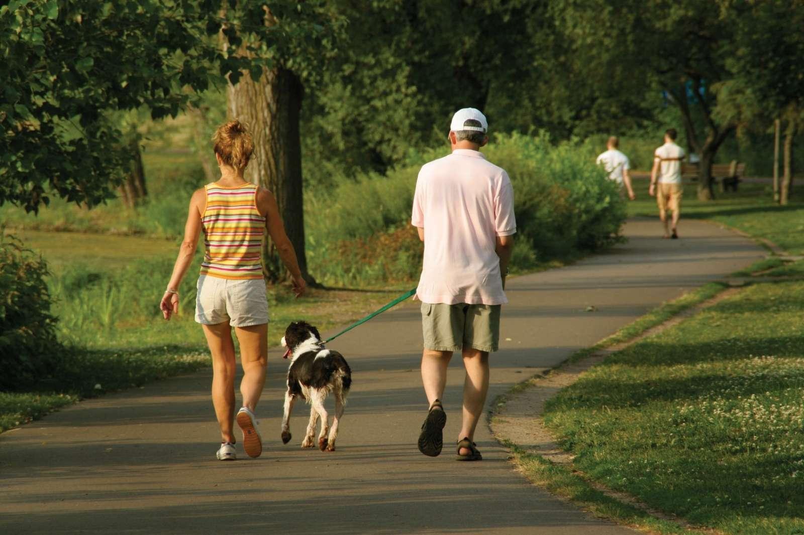 visszér gyaloglás visszér és megfázás kezelése