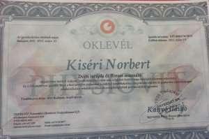 Kiséri_Norbert_Dorn-Terapeuta