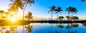 hawaii-norbimasszőr